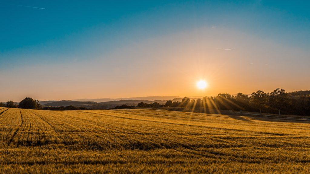 Bio Bauernhöfe in Deutschland