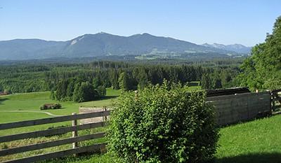 Ferien auf dem Öko Bauernhof